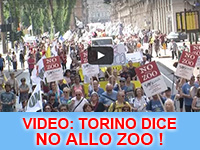 Video: Torino dice No allo Zoo